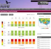 kite-data-dashboard