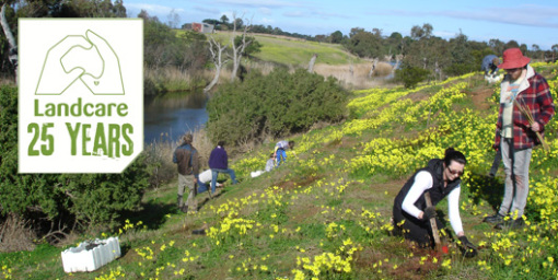 landcare-25-years