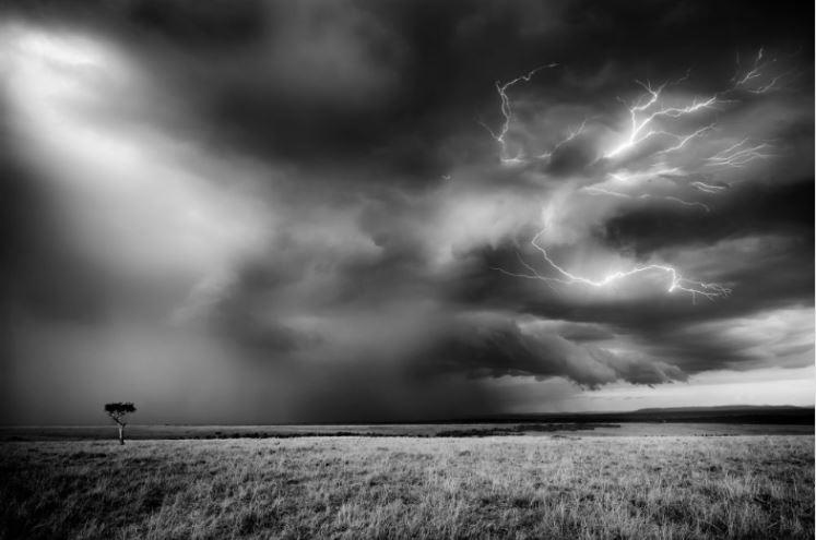 Masai Mara Storm Karen Lunney