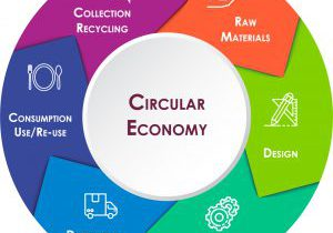 Circular Economy outlines