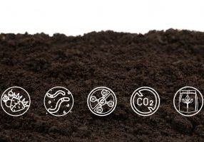 Soil icons Composting